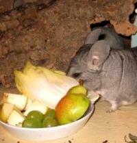 Frischer Obst-Gemüse-Teller