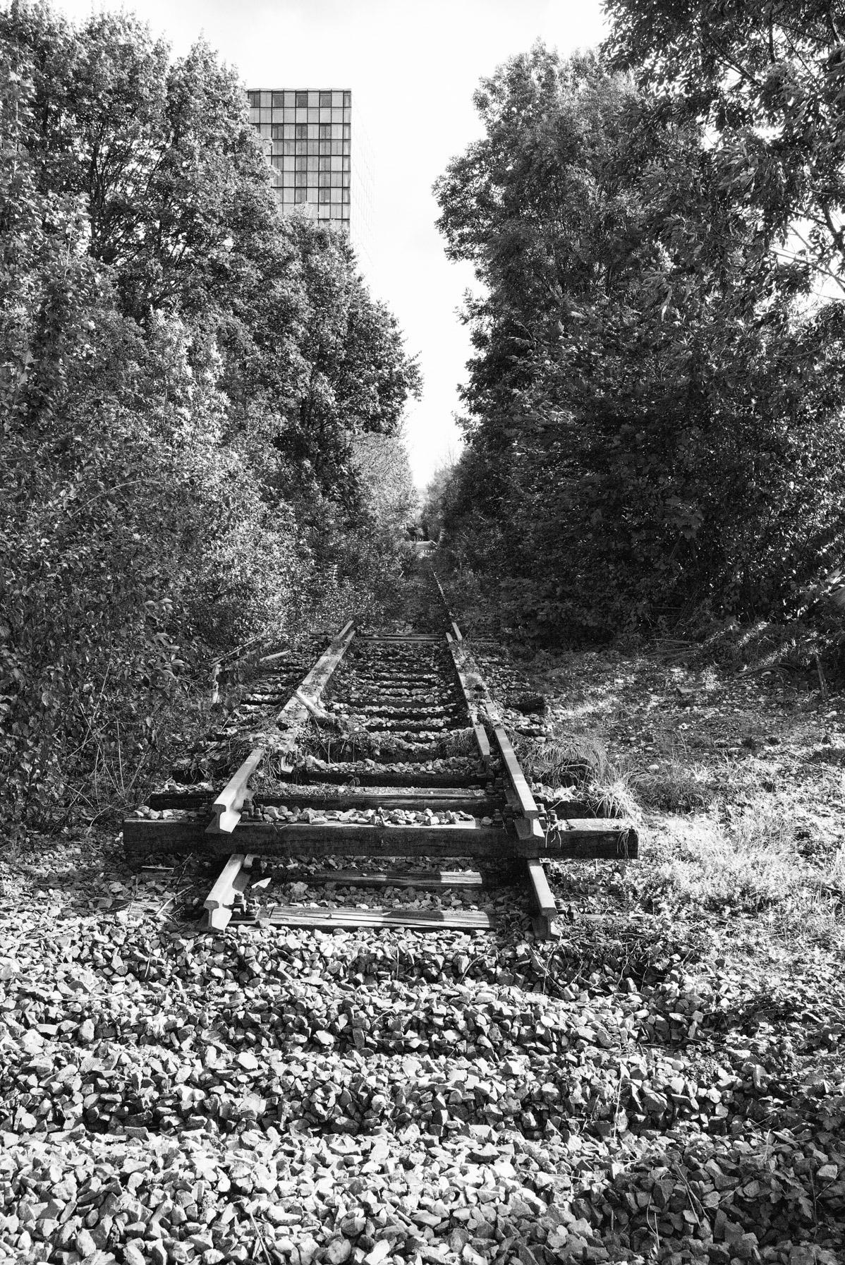 Reste eines ehemaliges Gütergleises in Steinhausen.