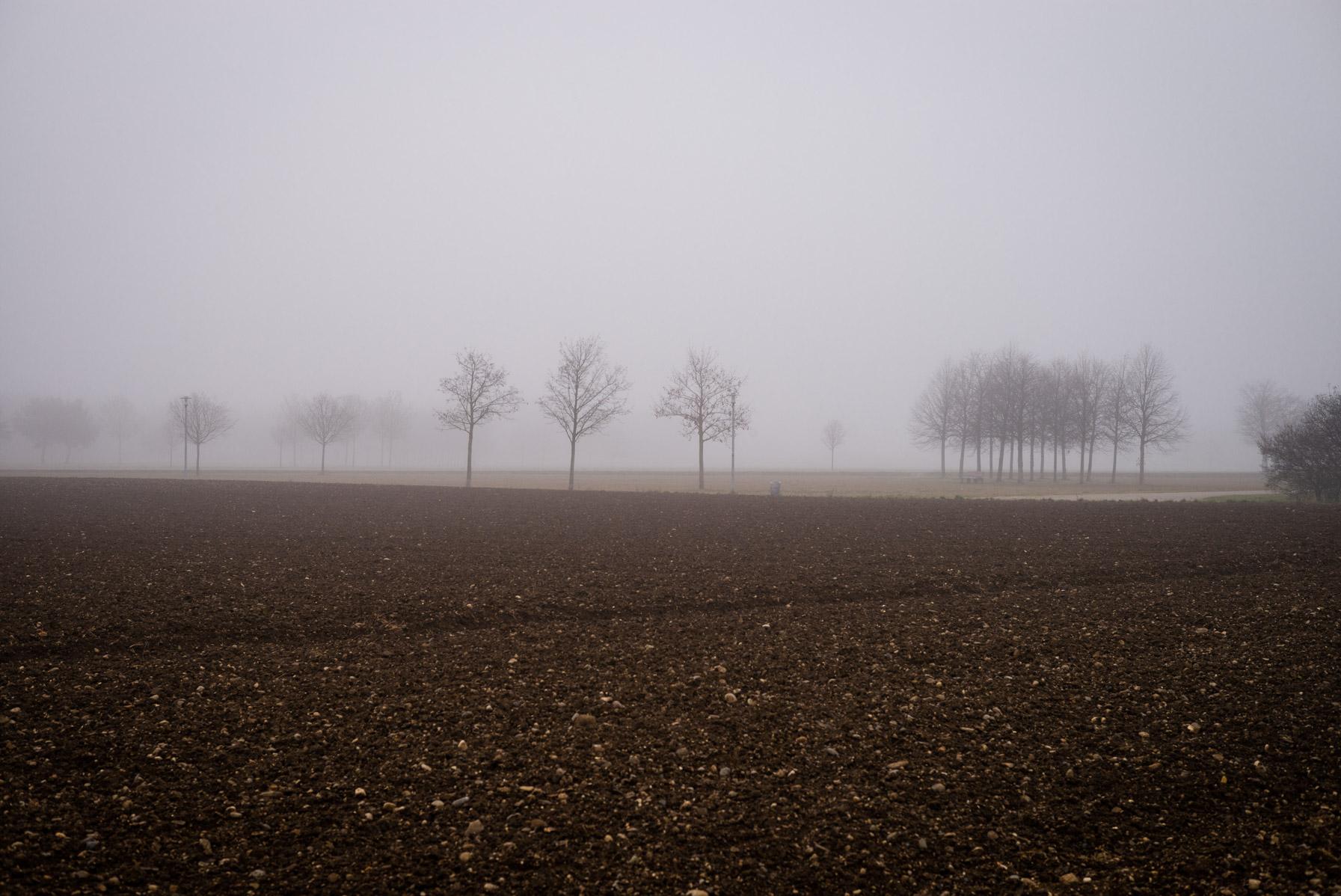Riemer Park im Nebel