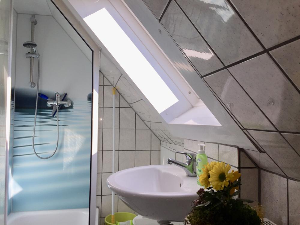 Tageslicht-Duschbad (Höhe Dusche max.1,80m)