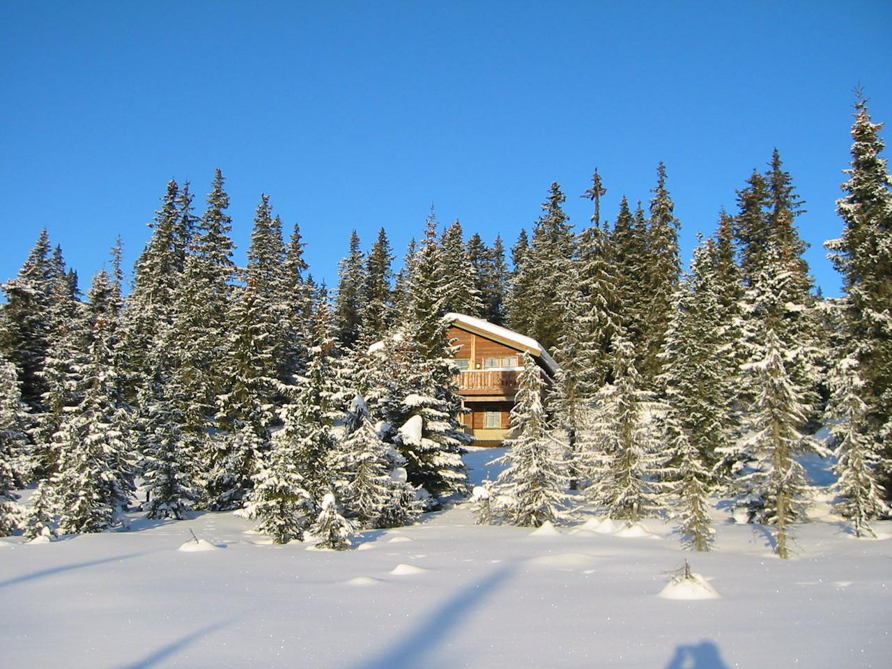 Tolle Hütte mit bester Aussicht