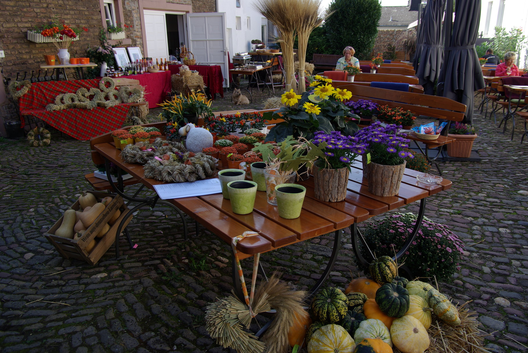 Das Kürbisfest im Hof! Immer am ersten Oktober-Wochenende...