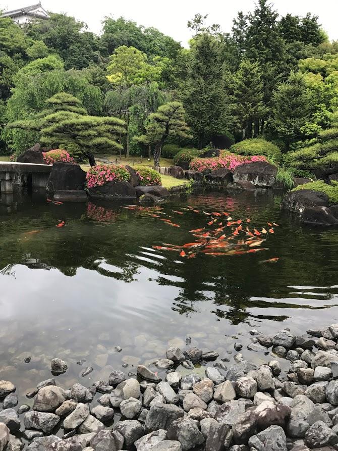 「好古園築山池泉の庭」ひろっちゃん