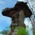 Pha Team Nationalpark