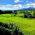 Ban Hua Nam Mushroom Farm - Nan Province