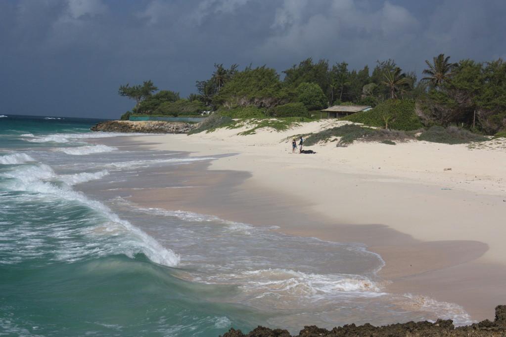 Silver Sands Beach - Barbados
