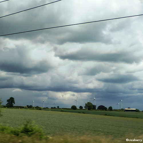 ▲車窓から風力発電の風車をよく見かけました。
