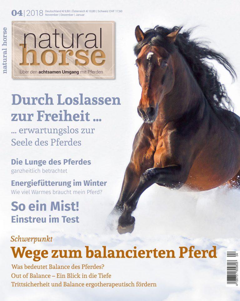 Natural Horse 4/2018: Trittsicherheit und Balance ergotherapeutisch fördern