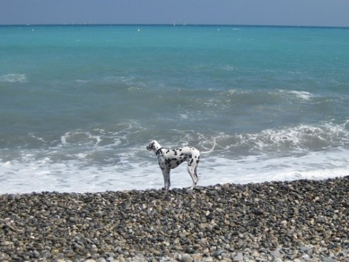 am Strand in Cagnes-Sur-Mer