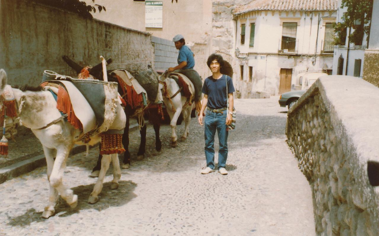 1990.グラナダ.サクロモンテの丘/アルバイシン地区