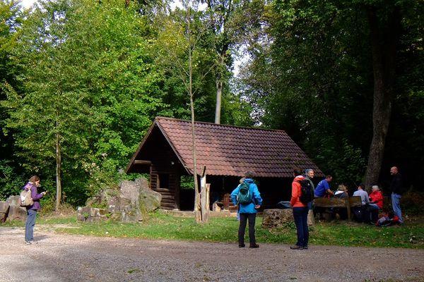 Hohler Kästenbaum Hütte