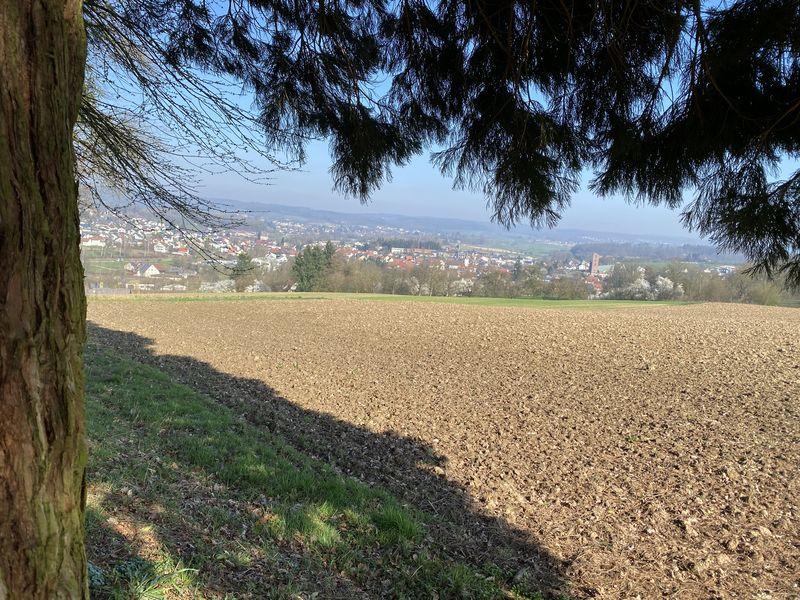 Blick auf Aglasterhausen