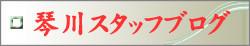 琴川のスタッフブログへ