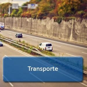 curso online transporte