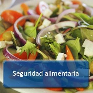 curso online seguridad alimentaria