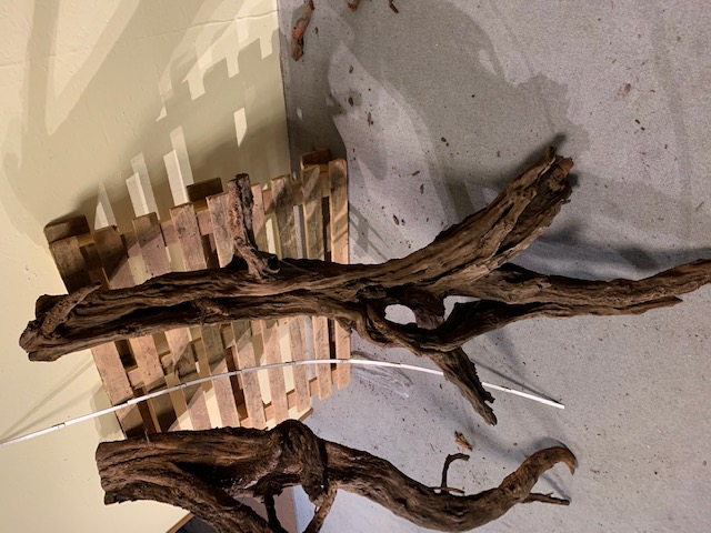 Aquatilis Zierfischwelten, Mangroven Wurzeln Aquarienwurzeln, Fotos Givemeasmile.de Peter Jäger