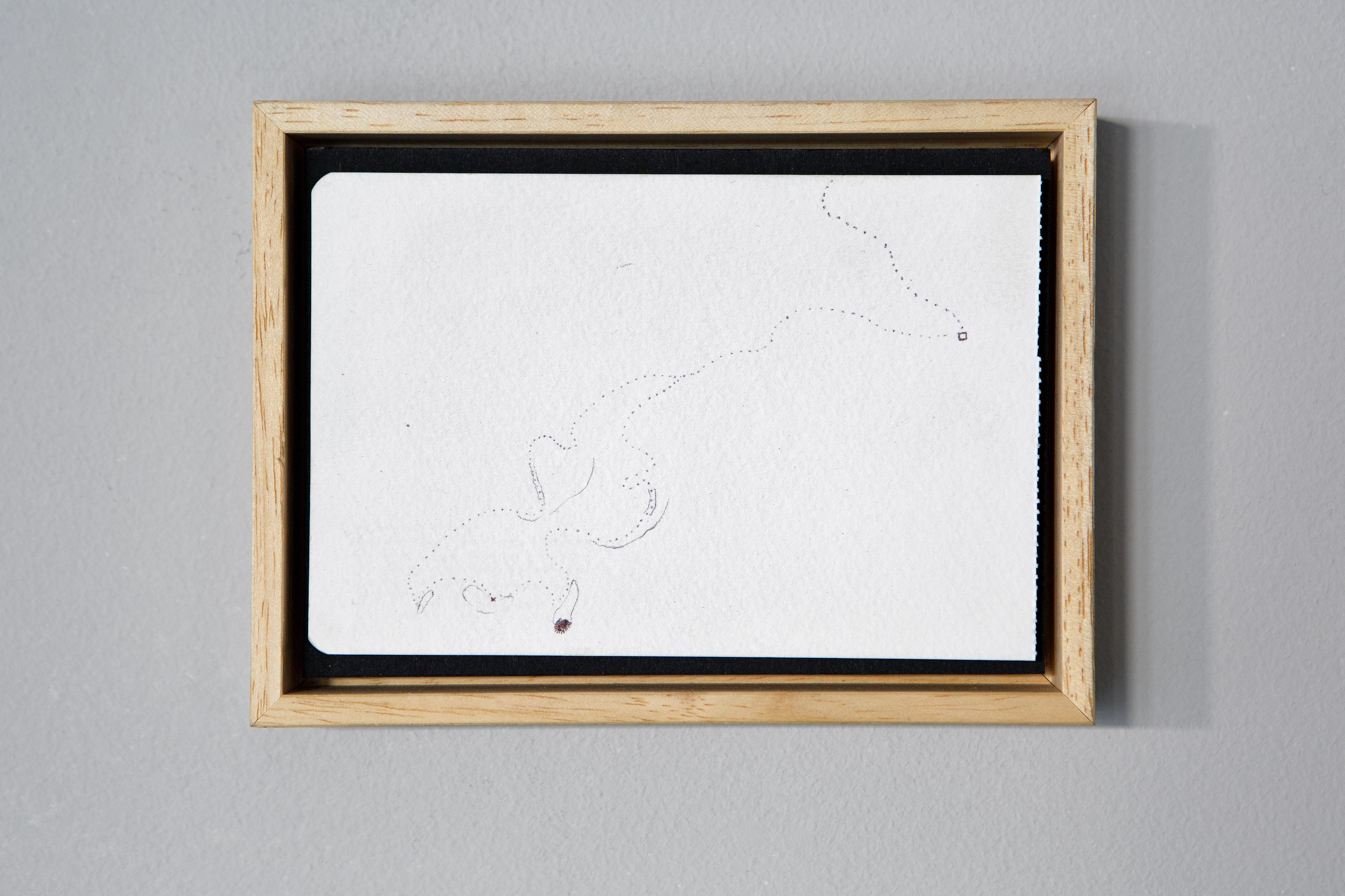 Mappa V