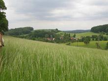 Wackenborner Hof