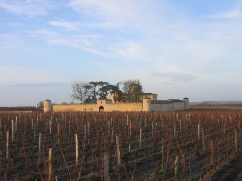 Partout, sans voiture, des balades dans les vignes des châteaux les plus prestigieux...