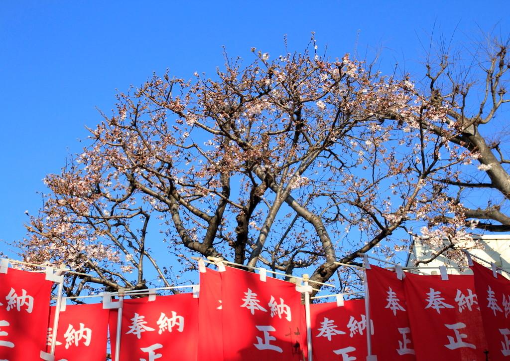 氷川稲荷神社