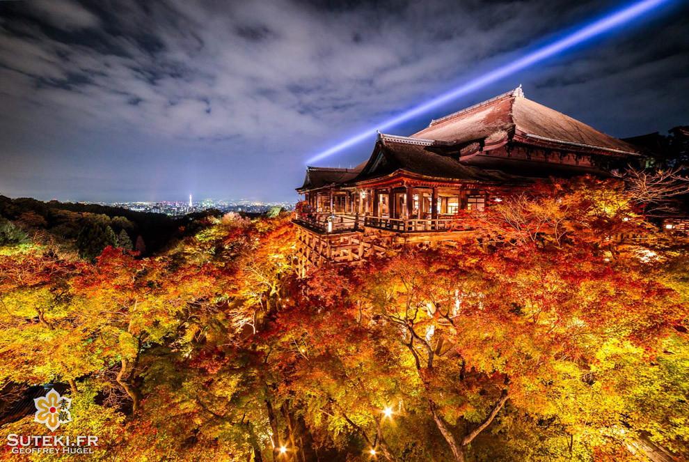 Le Kiyomizu-dera en lightup pendant les koyo, en voilà un sacré combo :)