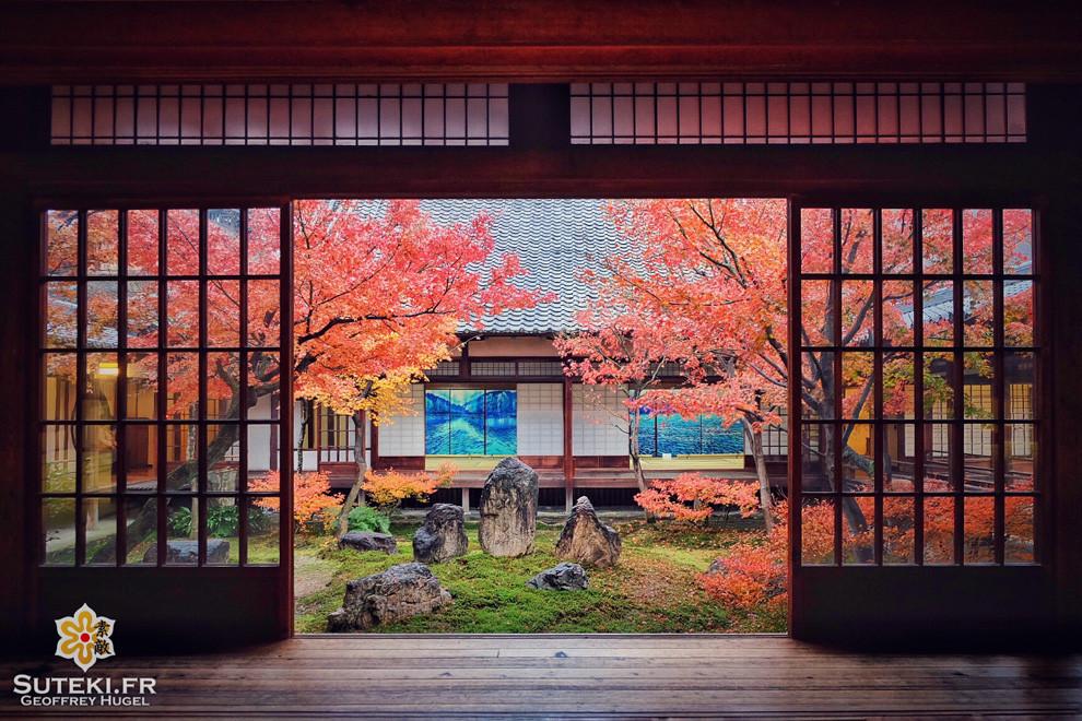 Profiter des dernières couleurs de l'automne dans un calme absolu