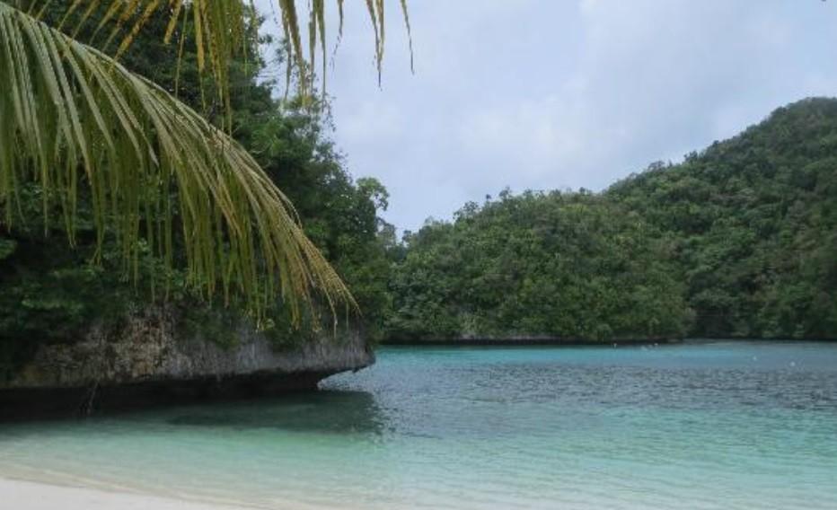 Palua Kayak Tour with Adventure Outlet