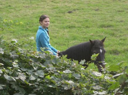 Hannah und Dante im Gelände, Sommer 2013.