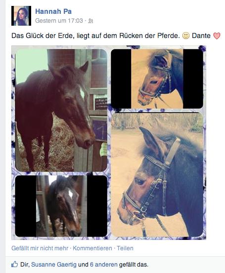 Facebook, im März 2014.
