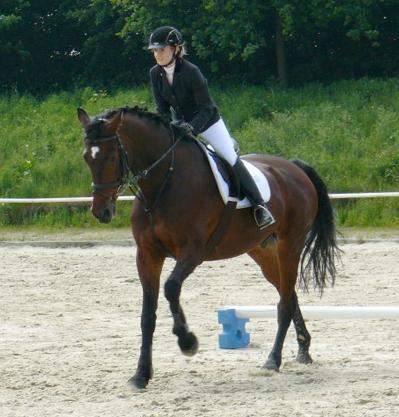 Lisa reitet Rigo auf ihrer Abzeichenprüfung (Kl.4) am 19. Mai 2014.