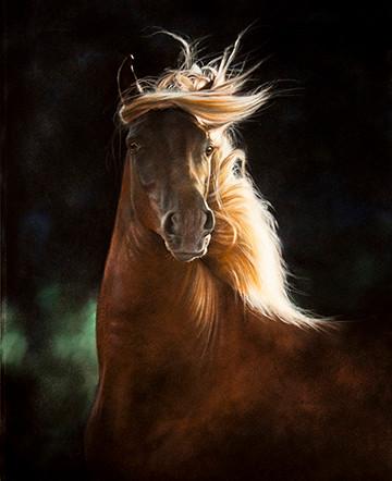 Corso alla Scuola delle Arti Bologna, tecnica pastelli con Lesley Harrison specializzata in dipinti di cavalli