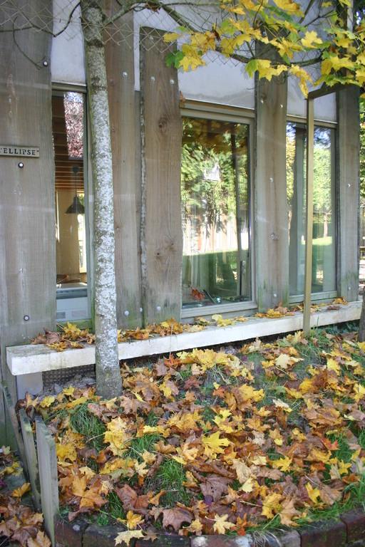 les baies vitrées du séjour