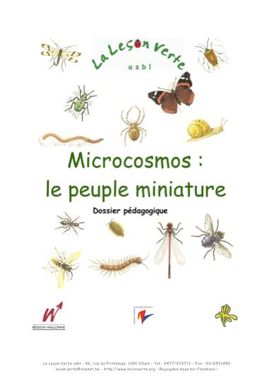 Dossier pédagogique insectes