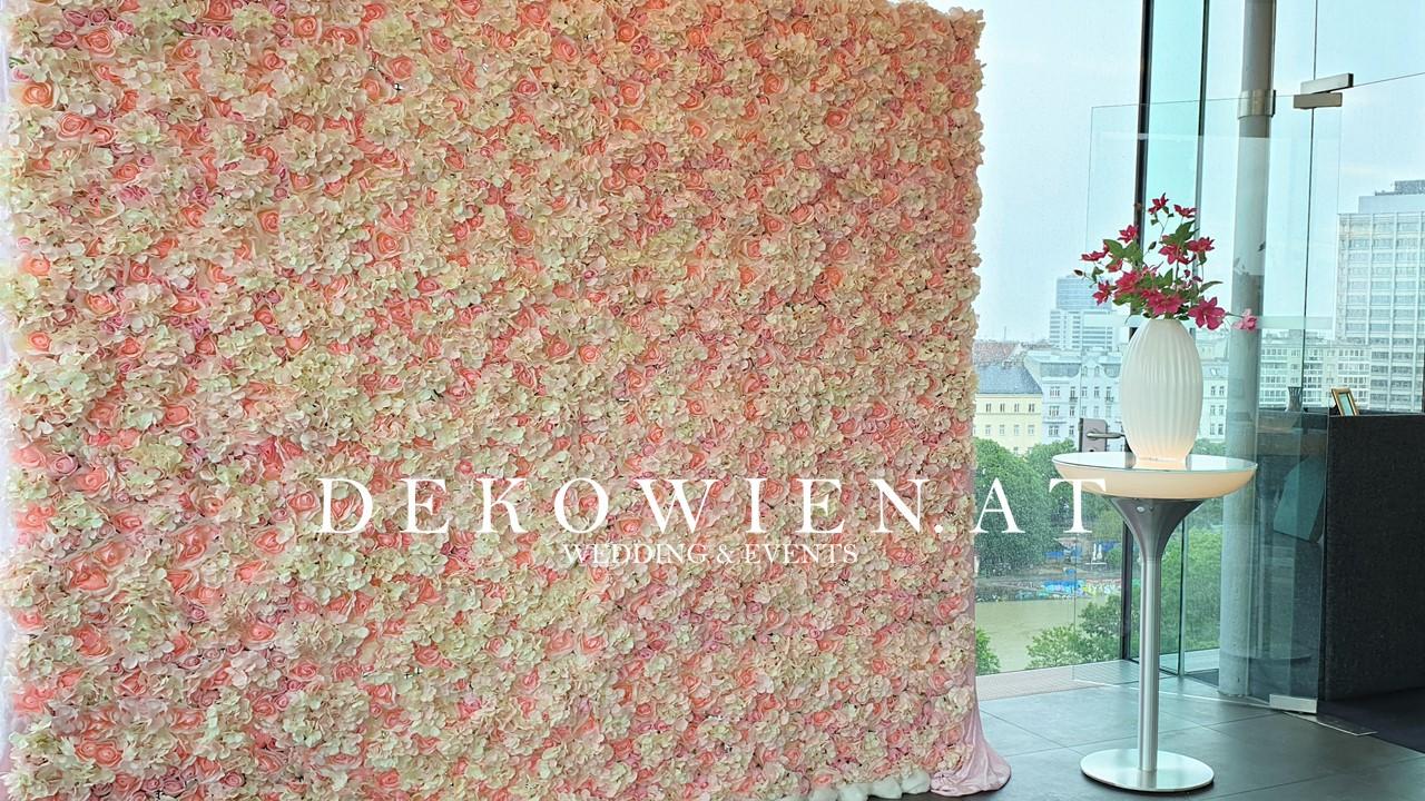 Blumenwand rose/ k47 Wien