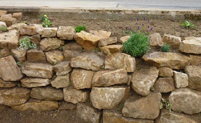 Die fertig bepflanzte Mauer
