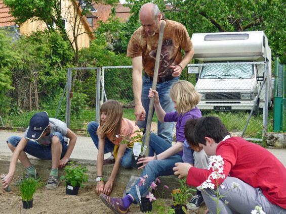 Martin Schmidt, NABU Wiesloch leitet die Kinder beim Pflanzlöcher Graben an.