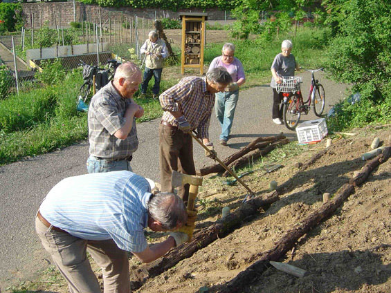 Befestigen der Terrasse mit Baumstämmen und Holzpflöcken.
