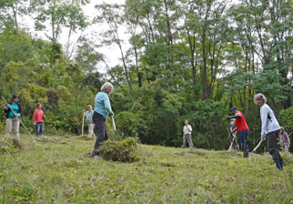 NABU-Gruppe bei der Biotoppflege, Foto: A. Treffer