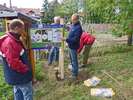 7. Oktober: das Schild zum Wildbienenhaus wird montiert.
