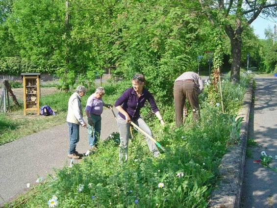 4. Mai 2011: Aktive der Kolpingsfamilie Wiesloch unter der Leitung von Dieter Riffel legen die Pflanzenterrasse an - mit dabei Simone Janas, NABU Wiesloch.