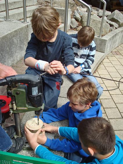 Baumscheiben werden gebohrt  (Durchmesser 2-10mm).