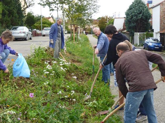 7. Oktober: es geht los,  Aktive von NABU Wiesloch und Kolpungsfamilie tragen den Pflanzenbewuchs ab
