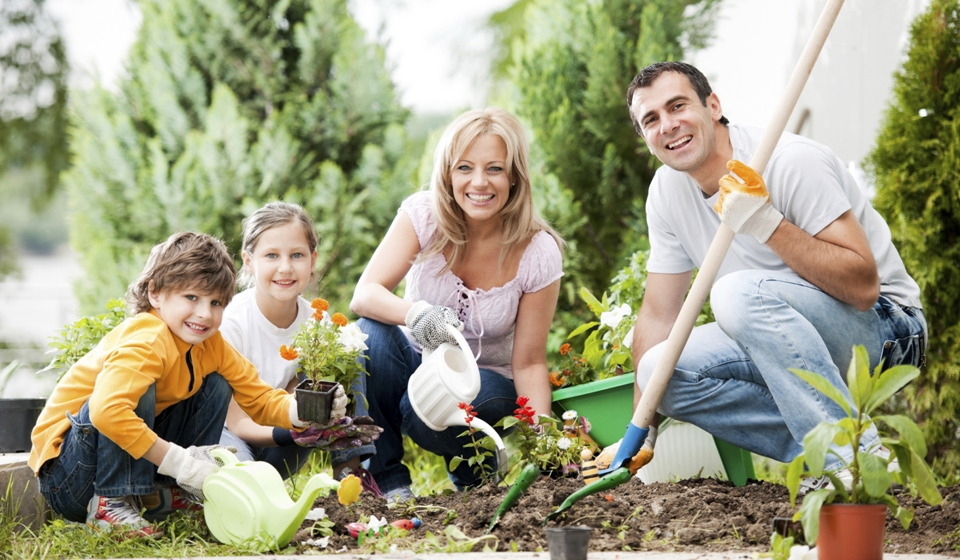 Семья работает в саду картинки