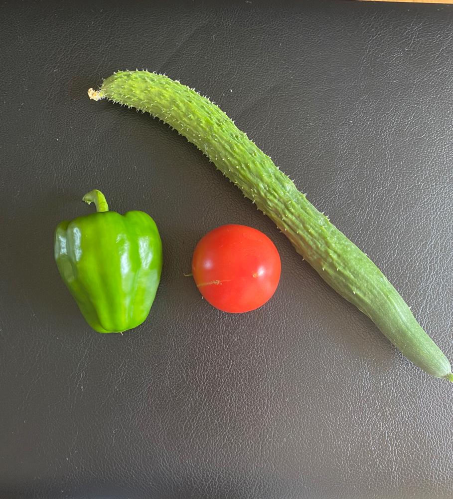 今日収穫したお野菜たち。色鮮やか〜。