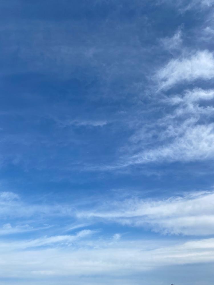秋の空♪   気持ち良い(^^)