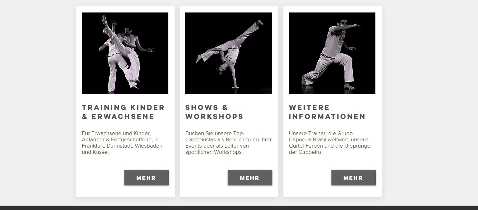 ...neues, frisches Design entwickeln, was aber gleichzeitig der Eleganz dieses Sports Rechnung trägt. Einbinden eines Blogs und eines Teamkalenders waren ebenfalls Teil der Aufgaben.