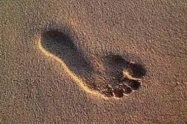 ökologischer Fußabdruck
