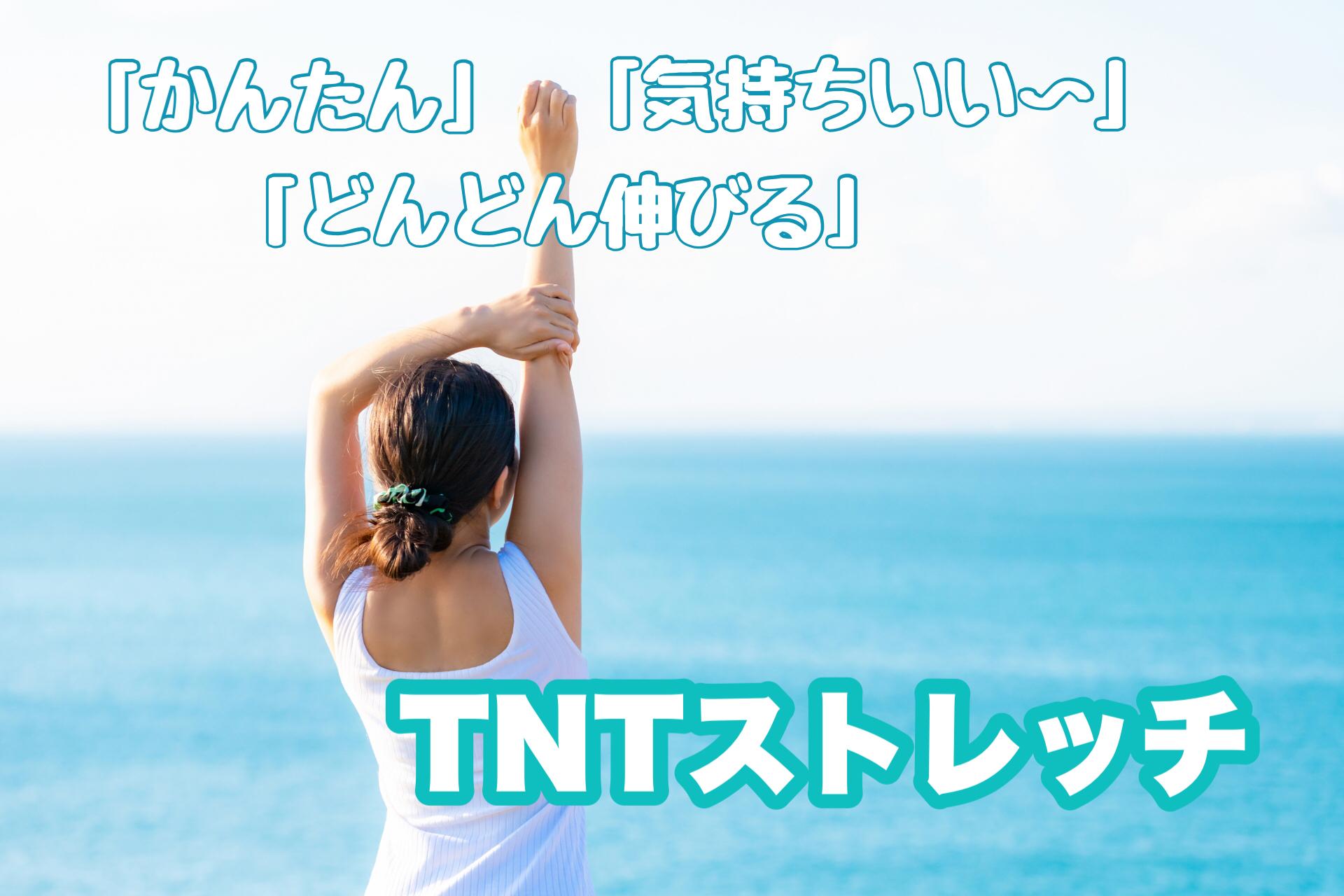 【超太っ腹特典付き!】TNTストレッチ動画レッスン