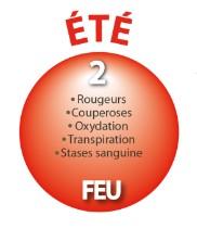 ETE - Elément FEU - Coeur - Intestin Grêle