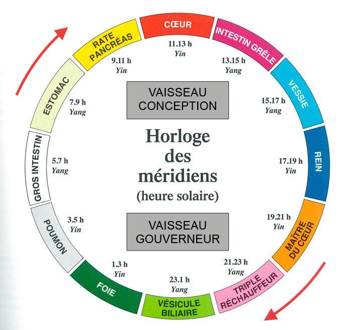 JOURNEE TYPE selon l'horaire énergétique des méridiens